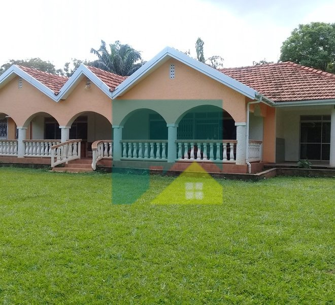 5 bedroom bungalow for rent in Kololo-Kampala